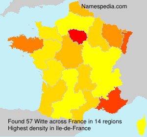 Surname Witte in France
