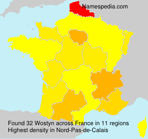 Surname Wostyn in France