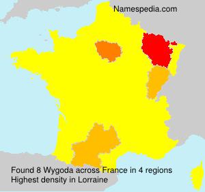 Wygoda - France