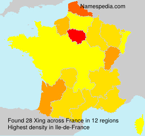 Surname Xing in France