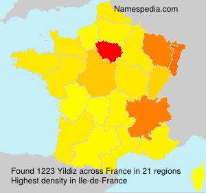 Surname Yildiz in France