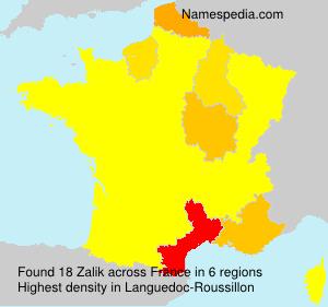 Familiennamen Zalik - France