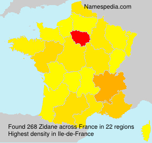 Surname Zidane in France