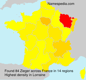 Surname Zieger in France