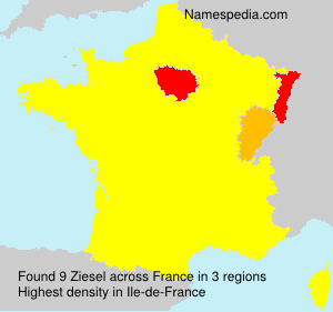 Surname Ziesel in France