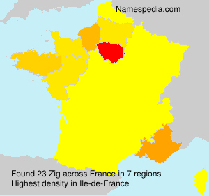 Surname Zig in France