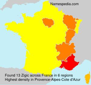 Surname Zigic in France