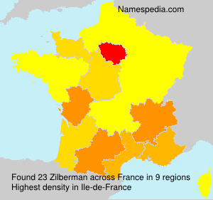 Surname Zilberman in France