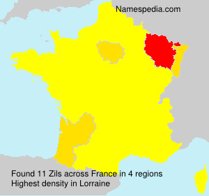 Surname Zils in France
