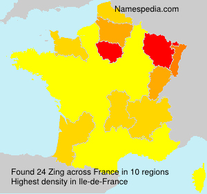 Surname Zing in France