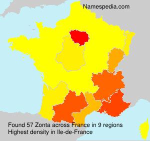 Surname Zonta in France