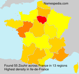 Surname Zouhir in France