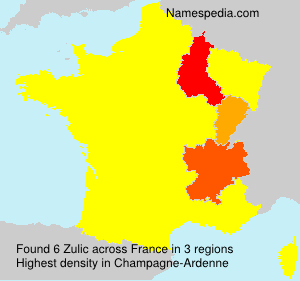 Surname Zulic in France