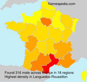 Surname male in France