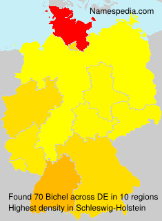 Surname Bichel in Germany