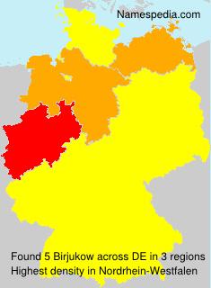 Surname Birjukow in Germany