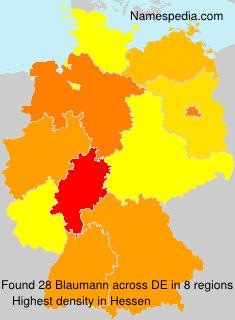 Surname Blaumann in Germany