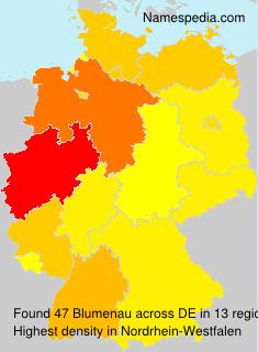 Familiennamen Blumenau - Germany