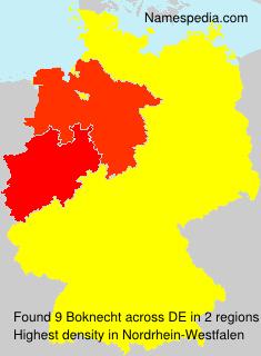 Boknecht