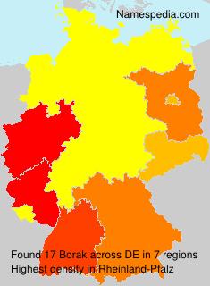 Familiennamen Borak - Germany