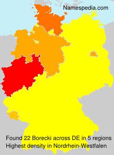 Surname Borecki in Germany