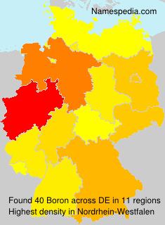 Familiennamen Boron - Germany