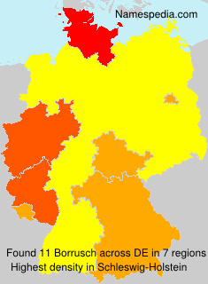 Familiennamen Borrusch - Germany