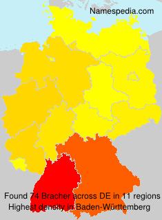 Surname Bracher in Germany