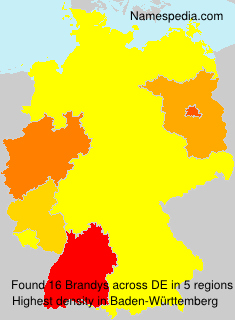 Familiennamen Brandys - Germany