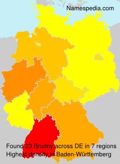 Surname Brudny in Germany