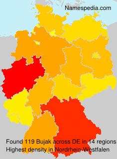 Surname Bujak in Germany