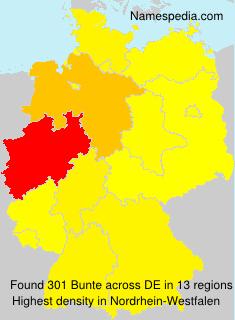 Familiennamen Bunte - Germany