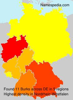Surname Burks in Germany