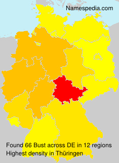 Surname Bust in Germany