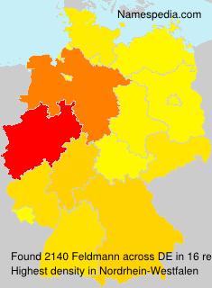 Surname Feldmann in Germany