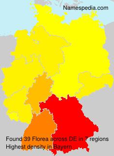 Familiennamen Florea - Germany