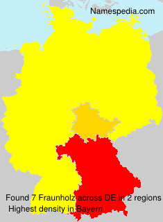 Surname Fraunholz in Germany