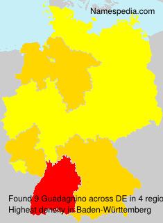 Surname Guadagnino in Germany