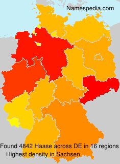 Haase - Germany