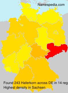 Willkommen beim Weißenfelser Fußballverein Schwarz-Gelb 1903 e.V.