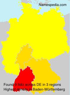 Surname Ildiz in Germany