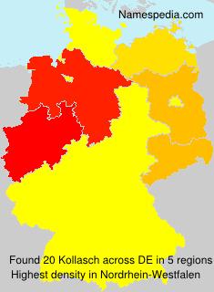 Kollasch