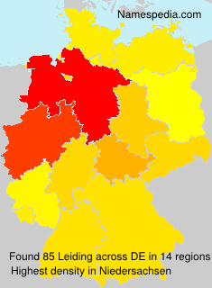 Surname Leiding in Germany