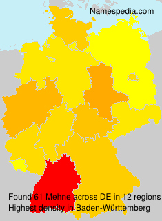 Surname Mehne in Germany