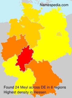 Meyl - Germany