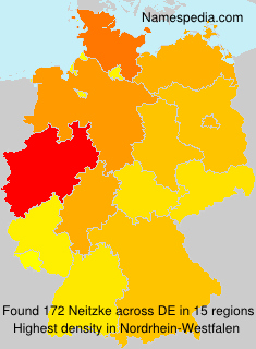 Surname Neitzke in Germany