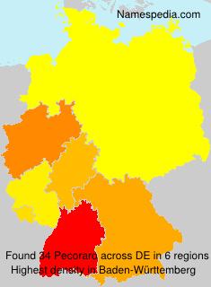 Surname Pecoraro in Germany