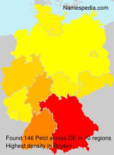 Pelzl