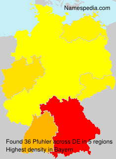 Familiennamen Pfuhler - Germany