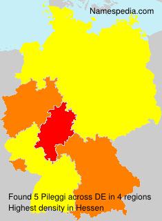 Surname Pileggi in Germany